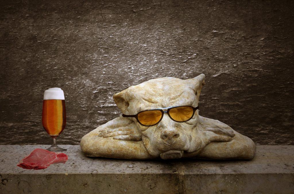 chien avec viande et bière